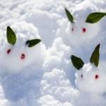 英検は雪で中止になる?